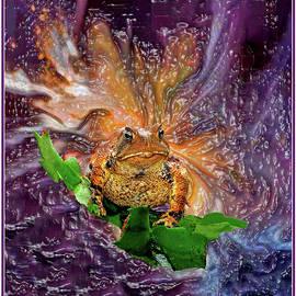 Galaxy Of The Amphibian by Constance Lowery