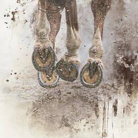 Gallop by Elisabeth Lucas