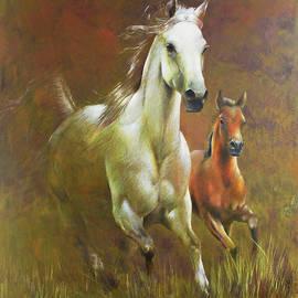 Gallop in the eyelash of the morning by Vali Irina Ciobanu