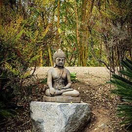 Garden Buddha by Mitch Shindelbower
