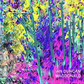 Garden Dreams by Ian MacDonald