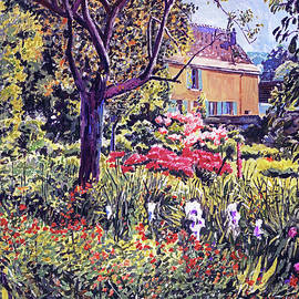 Garden In Provence by David Lloyd Glover