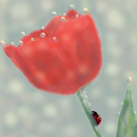 Garden Pearls by Angela Davies