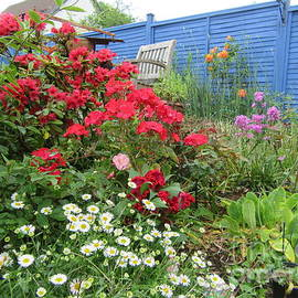 Garden Reds by Lesley Evered