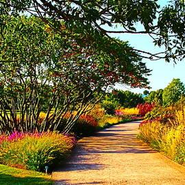 Garden Splendor by Loretta S