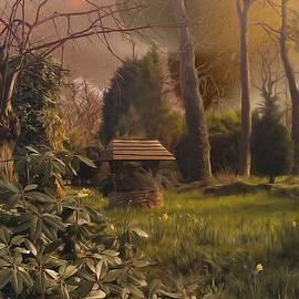 Garden Well - An Alien Country Garden by Abbie Shores
