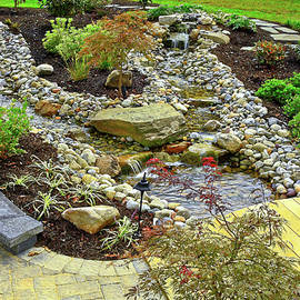 Garden with Water by Sally Weigand
