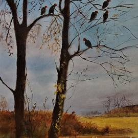 Gathering of Turkey Vultures on Neilson by Barbara Moak