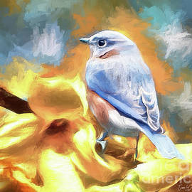 Gazing Autumn Bluebird by Tina LeCour