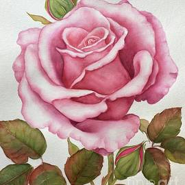 The pink rose by Inese Poga