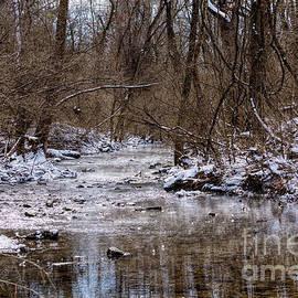 Gentle Steam Over Galloway Creek by Jennifer White