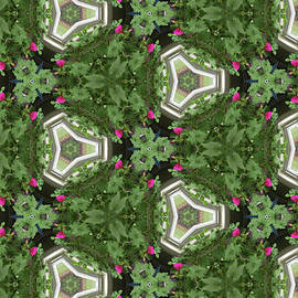 Geometric Garden by Karen Adams
