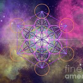 Geometry of Life by Ligia Padron Acevedo