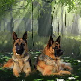 German Shepherd Dogs Relaxing in the Pond - DWP1586973 by Dean Wittle