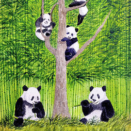 Giant Panda Bears - Hey It's Time To Eat by Bill Holkham