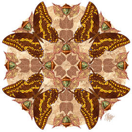 Giant Swallowtail Forest Floor Mandala by Tim Phelps