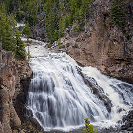 Gibbon Falls Yellowstone National Park by Joan Carroll