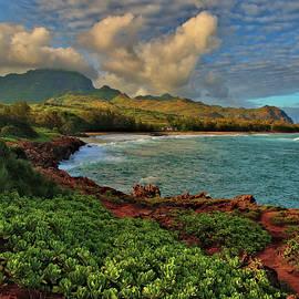 Gillans Beach, Kauai by Stephen Vecchiotti