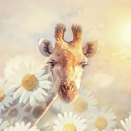 Giraffe and Daisy Dreams by Lynn Bauer