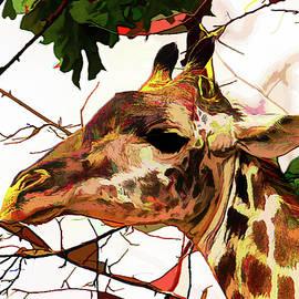 Giraffe Portrait in Acrylics by John Haldane