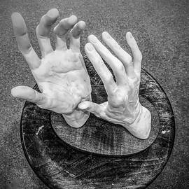 Give Me a Hand-2 by Sage Photography