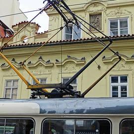Gliding Through Prague by Ira Shander