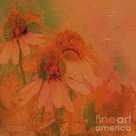 Glorious Garden by Beverly Guilliams