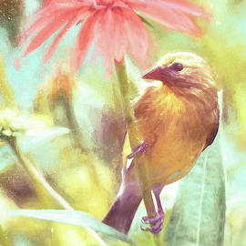 Glorious Goldfinch by Tina LeCour