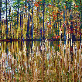 Glorious September by Richard Perry