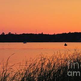 Glorious Summer Evening by Ann Brown