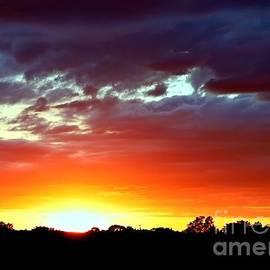Glorious Vivid Sunset by Lori Pessin Lafargue
