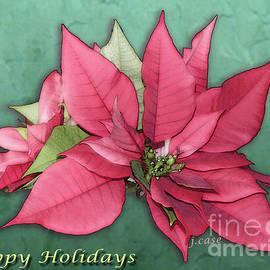 Glowing Beauty Holiday Card by Julieanne Case