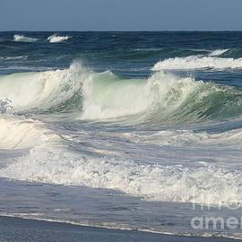 Gnarly Curls and Wild Waves  by Lori Lafargue