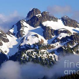 Goat Island Mountain, Mount Rainier National Park by Douglas Taylor
