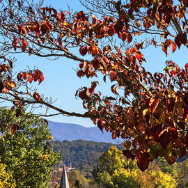 God is Good Church in the Autumn Dogwoods by Debra and Dave Vanderlaan