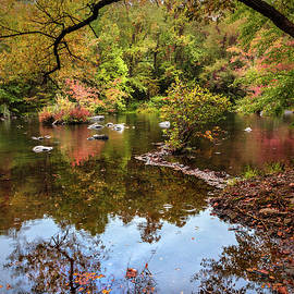 Going Full Circle into Fall II by Debra and Dave Vanderlaan