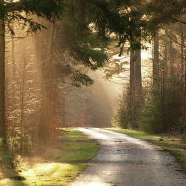 Going towards the light by Juergen Hess