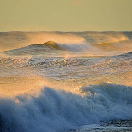 Golden and White Ocean by Dianne Cowen