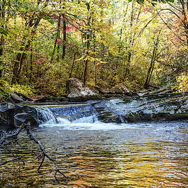 Golden Cascades by Debra and Dave Vanderlaan