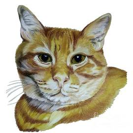 Golden Cat  by Maria Sibireva