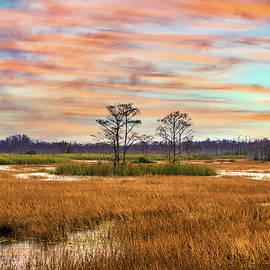 Golden Grasses across the Everglades by Debra and Dave Vanderlaan