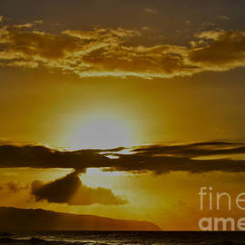 Golden  Hawaiian Light by Debra Banks