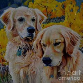 A Golden Pair, Golden Retrievers by Kelly McNeil