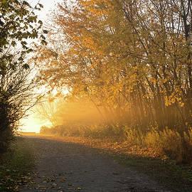 Golden Mists of Autumn - Country Road Towards the Sunshine by Georgia Mizuleva