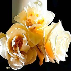 Golden  Moment  Rose by VIVA Anderson