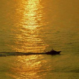 Golden Morn by Arlane Crump