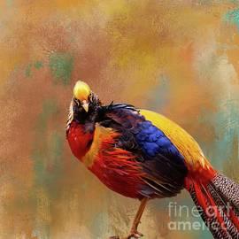 Golden Pheasant by Eva Lechner