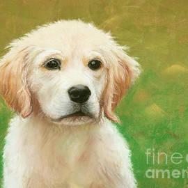 Golden Puppy by Susan Cunniff
