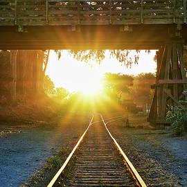 Golden Rails from Santa Cruz by Scott Eriksen