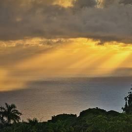 Golden Rainstorm by Heidi Fickinger